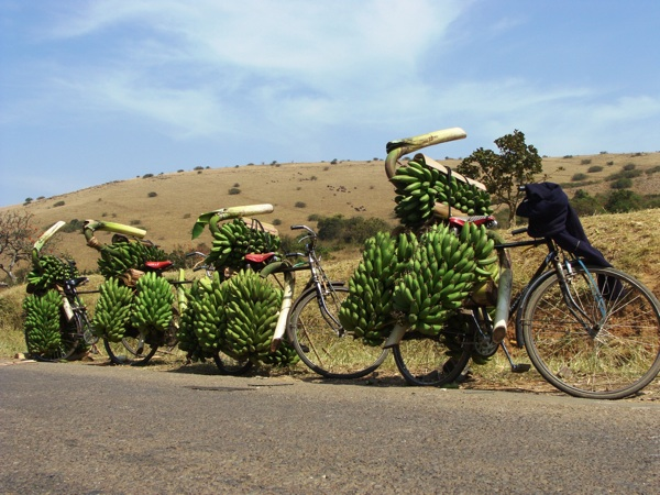 food-snacks-bananas-uganda